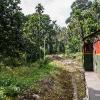 150306-1107-19R - Im Expo Rail von Kandy nach Colombo