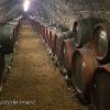 170425-1642-53-Weinkellerei im Tokaj