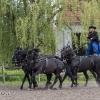 170427-1411-13-Hortobágyi