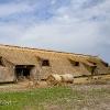 170427-1431-10-Hortobágyi