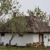 170427-1434-21-Hortobágyi