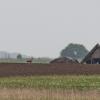 Schreiadler-170428-1524-40